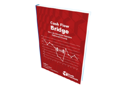 Cash Flow Bridge